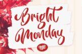 Last preview image of Bright Monday Script