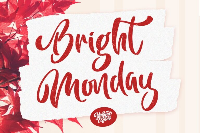 Preview image of Bright Monday Script