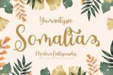 Last preview image of Somalia