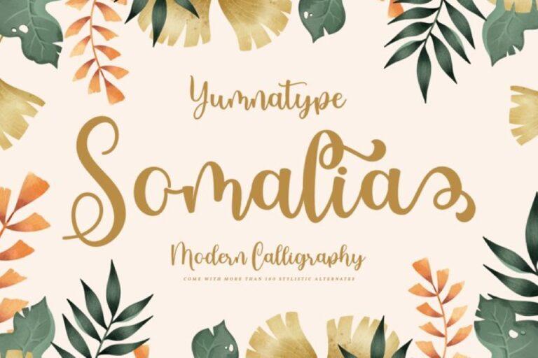 Preview image of Somalia